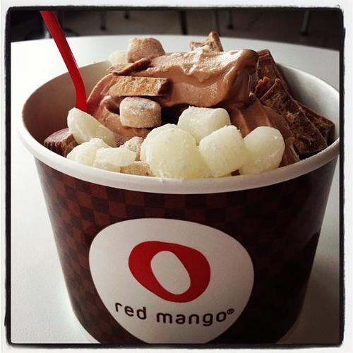 Copycat Red Mango Recipe Courtesy of Julie @ EveryCollegeGirl.com
